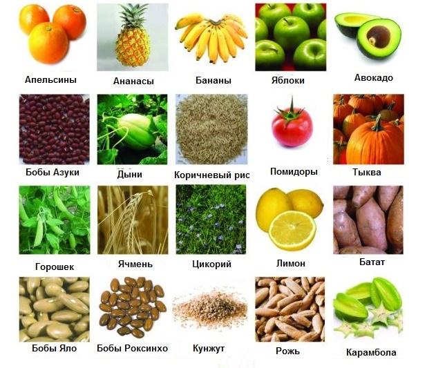 Пребиотики, перечень продуктов