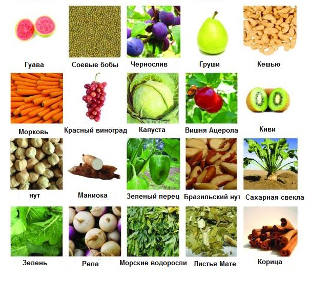 Пребиотики, перечень препаратов