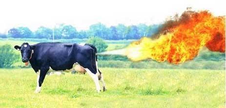 Метеоризм, горючие газы