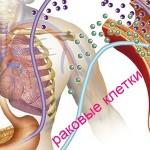 Новые онкомаркеры желудочно-кишечного тракта: кишечника и желудка предложены Европейской группой