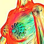 Что показывает онкомаркер РЭА и какова его норма у женщин: пояснение врача